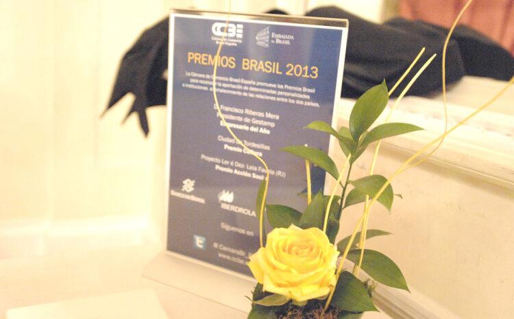 Premios Brasil 2013
