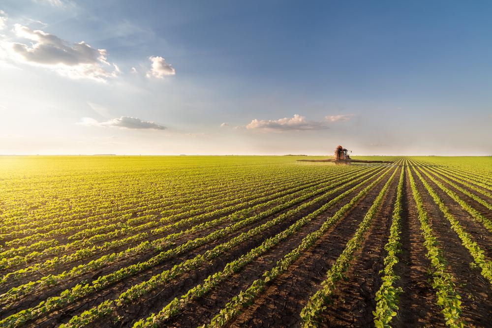 Brasil, el primer país, fuera de Europa, de exportación de hortalizas y frutas españolas