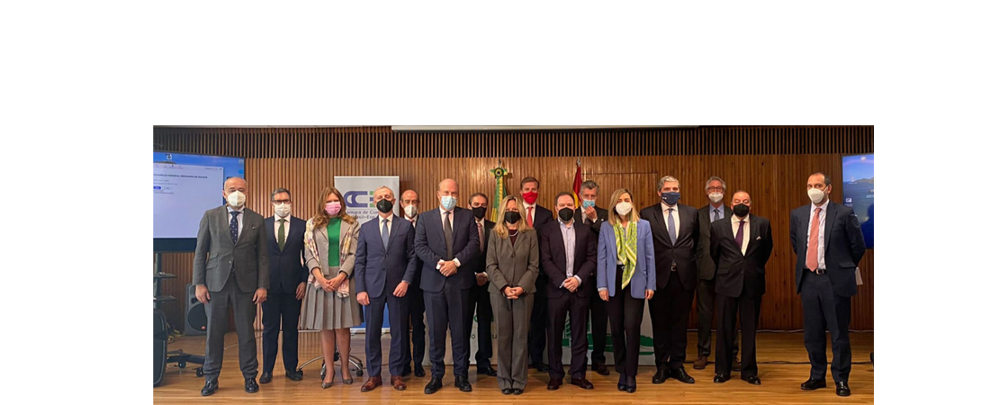 Asamblea General de Socios CCBE 2021