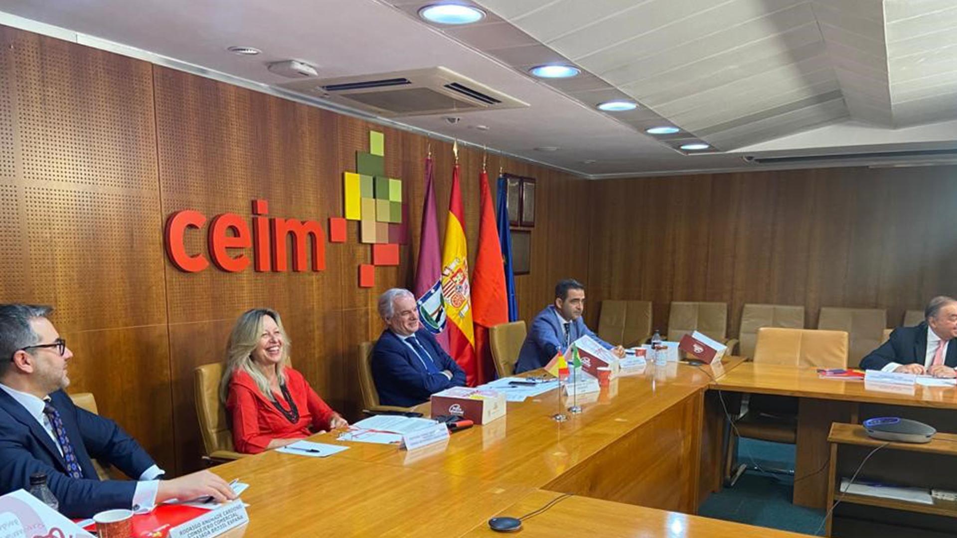 Presentación de Servicios al Inversor de CEIM y el Ayuntamiento de Madrid a las empresas brasileñas socias de la Cámara